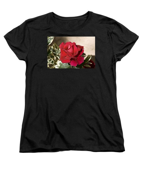Rose 5 Women's T-Shirt (Standard Cut) by Andy Shomock