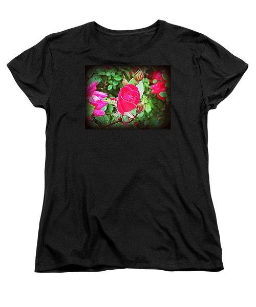 Rose Garden Centerpiece 2 Women's T-Shirt (Standard Cut) by Pamela Hyde Wilson
