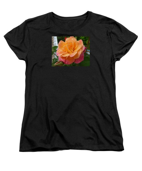 Women's T-Shirt (Standard Cut) featuring the photograph Rosemary And Thyme by Lingfai Leung