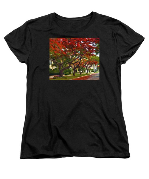 Royal Poinciana Trees In Blooming In South Florida Women's T-Shirt (Standard Cut)