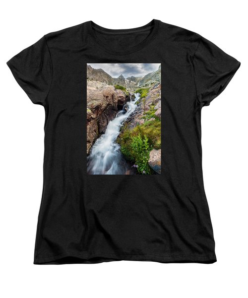 Rushing Thru Women's T-Shirt (Standard Cut) by Steven Reed