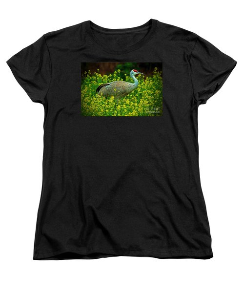 Sandhill Crane Women's T-Shirt (Standard Cut) by Elizabeth Winter