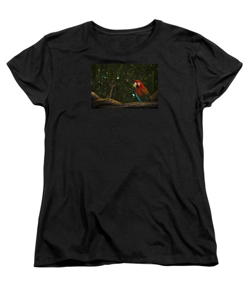 Scarlet Macaw Profile Women's T-Shirt (Standard Cut) by Bradley R Youngberg