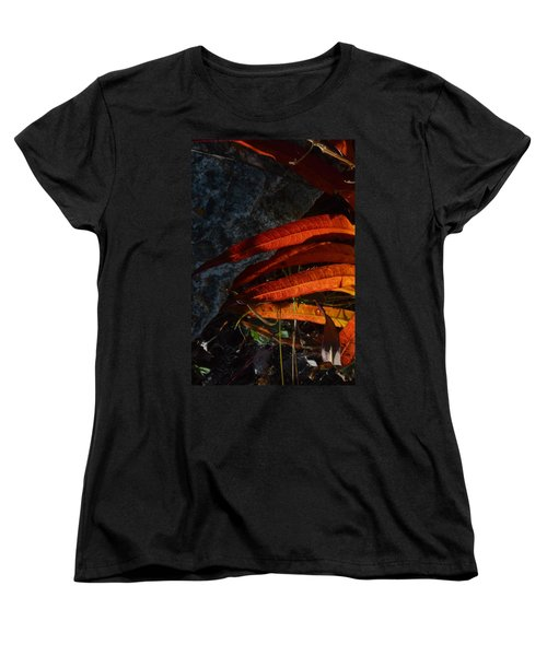 Seasonal Color Theory Women's T-Shirt (Standard Cut) by Brian Boyle