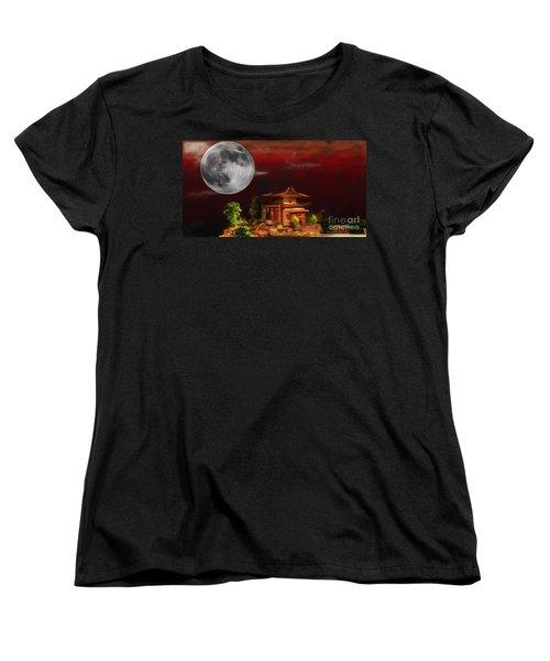 Seeking Wisdom Women's T-Shirt (Standard Cut) by Dan Stone
