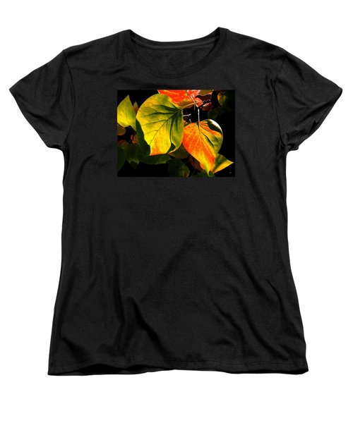 Shades And Shadows Women's T-Shirt (Standard Cut) by Will Borden