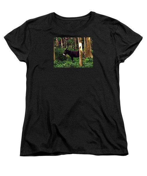 Shhh I'm Hiding Women's T-Shirt (Standard Cut) by Patricia Griffin Brett