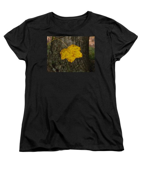 Women's T-Shirt (Standard Cut) featuring the photograph Single Poplar Leaf by Nick Kirby