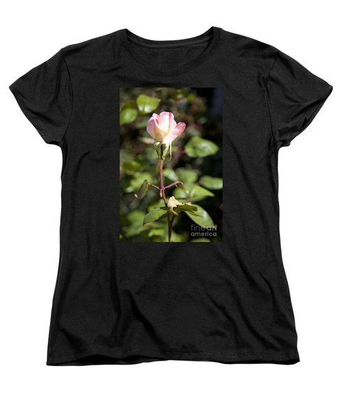 Women's T-Shirt (Standard Cut) featuring the photograph Single Rose by David Millenheft