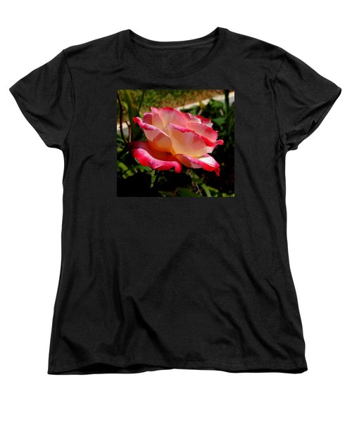 Single Rose Women's T-Shirt (Standard Cut) by Pamela Walton
