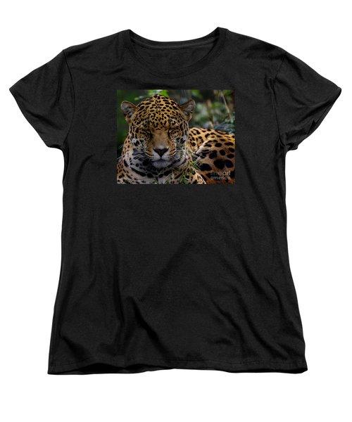 Sleeping Jaguar Women's T-Shirt (Standard Cut) by Liz Masoner
