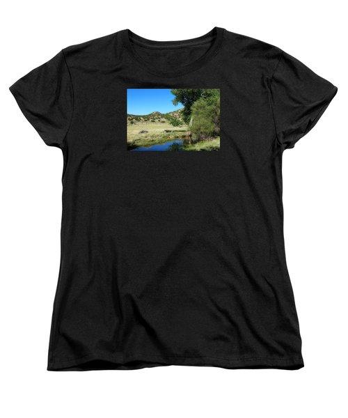 Sleepy Summer Afternoon Women's T-Shirt (Standard Cut) by Elizabeth Sullivan