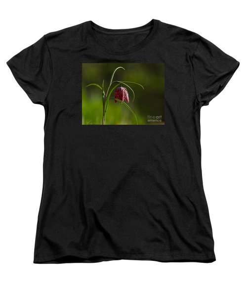 Snake's Head Women's T-Shirt (Standard Cut) by Torbjorn Swenelius
