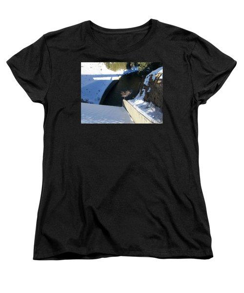 Snow Slide Women's T-Shirt (Standard Cut) by Jewel Hengen