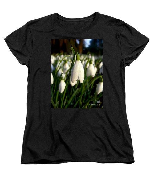 Snowdrops Women's T-Shirt (Standard Cut) by Nina Ficur Feenan