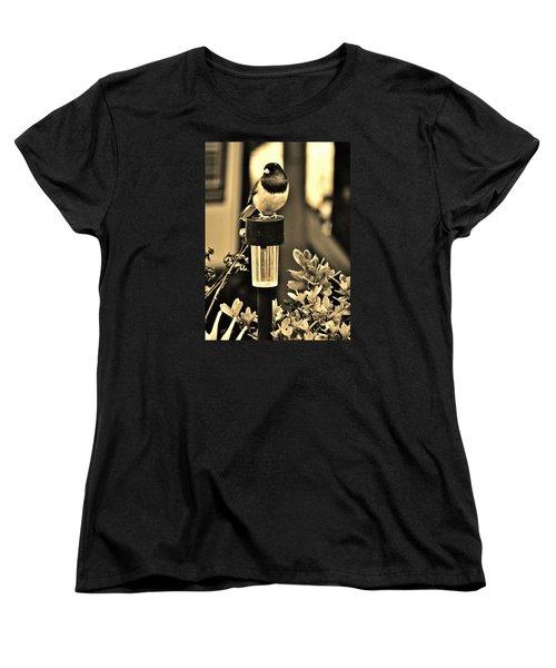 Women's T-Shirt (Standard Cut) featuring the photograph Solar Light Sitting by VLee Watson