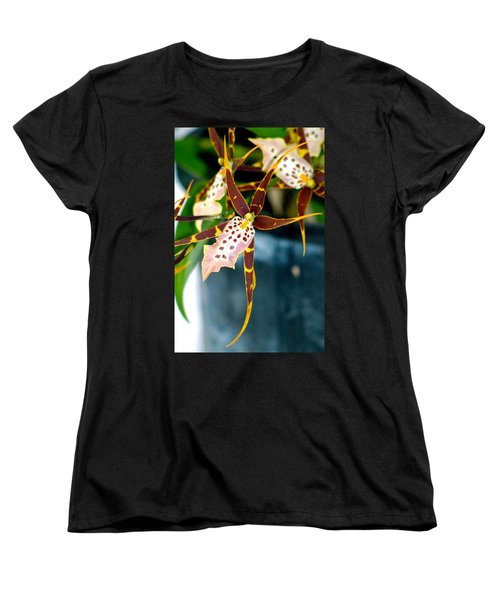 Spider Orchid Women's T-Shirt (Standard Cut) by Lehua Pekelo-Stearns