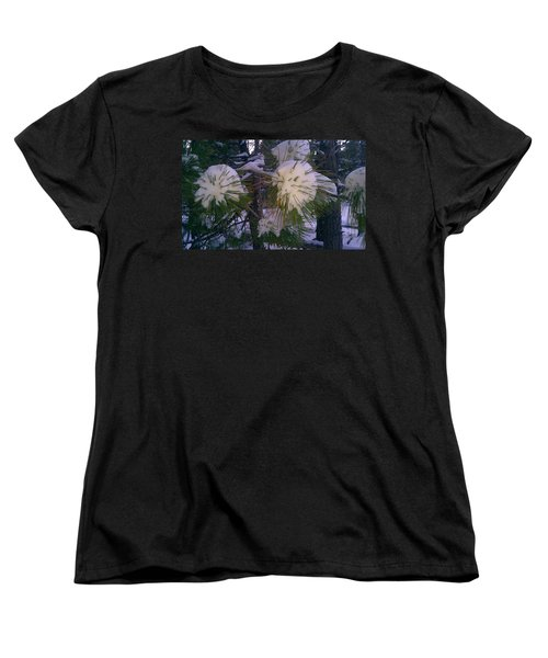 Spiny Snow Balls Women's T-Shirt (Standard Cut) by Chris Tarpening