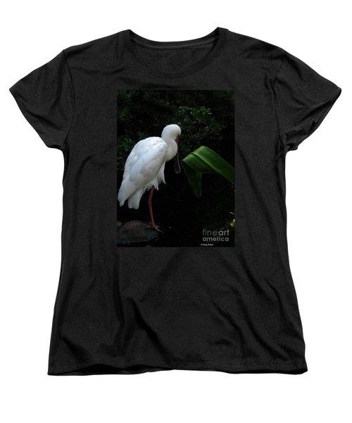 Spoonbill Morning Women's T-Shirt (Standard Cut) by Greg Patzer