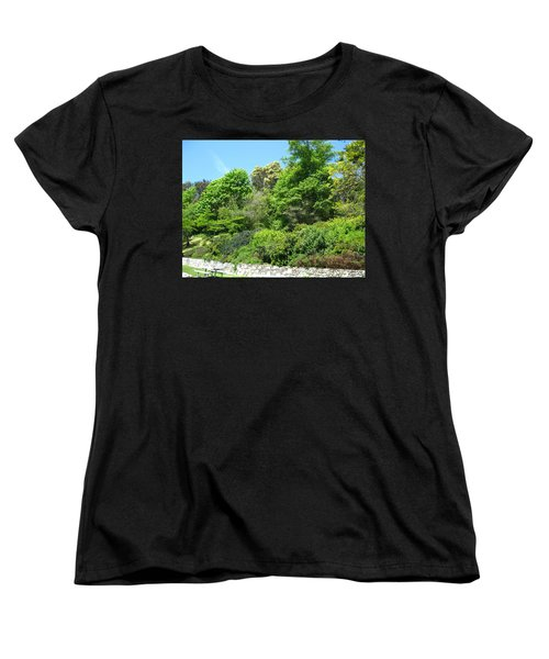 Stone Wall 2 Women's T-Shirt (Standard Cut) by David Trotter