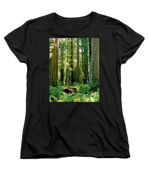 Stout Grove Coastal Redwoods Women's T-Shirt (Standard Cut) by Ed  Riche