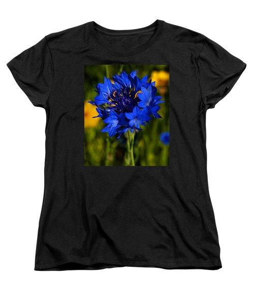 Straw Flower Women's T-Shirt (Standard Cut) by Roger Becker