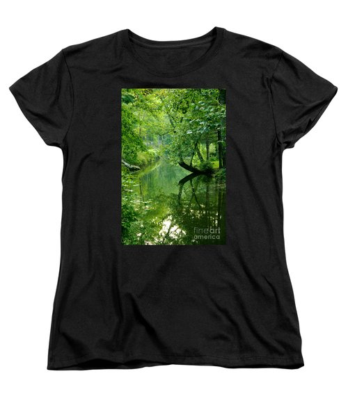 Summer Stream Women's T-Shirt (Standard Cut)