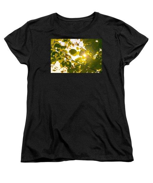 Women's T-Shirt (Standard Cut) featuring the photograph Sun Shining Through Leaves by Chevy Fleet
