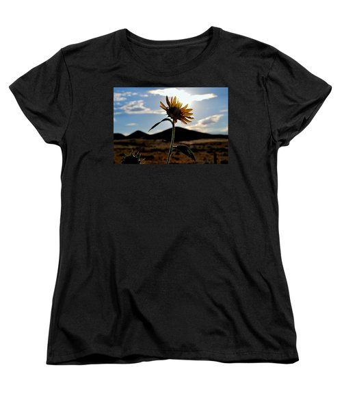Sunflower In The Sun Women's T-Shirt (Standard Cut) by Matt Harang
