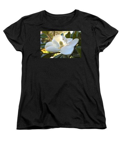 Sunlit Southern Magnolia Women's T-Shirt (Standard Cut)