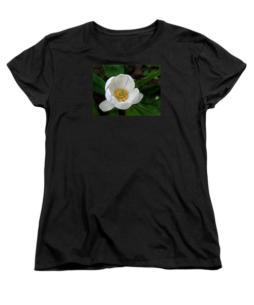 Women's T-Shirt (Standard Cut) featuring the photograph Sweetbay Magnolia by William Tanneberger