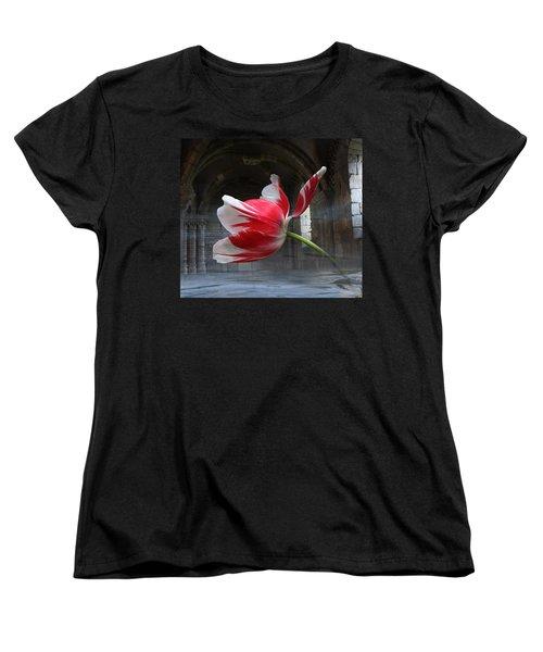 Tabula Rasa Women's T-Shirt (Standard Cut) by Yvonne Wright