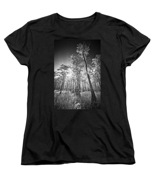 Tall Cypress Trees Women's T-Shirt (Standard Cut) by Bradley R Youngberg