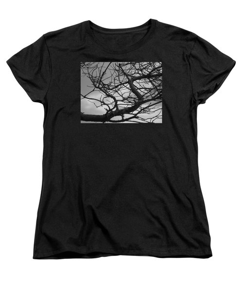 Tangled By The Wind Women's T-Shirt (Standard Cut)