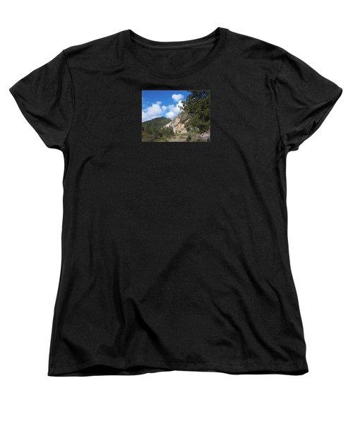 Clouds Of Hearts Women's T-Shirt (Standard Cut) by Bobbee Rickard