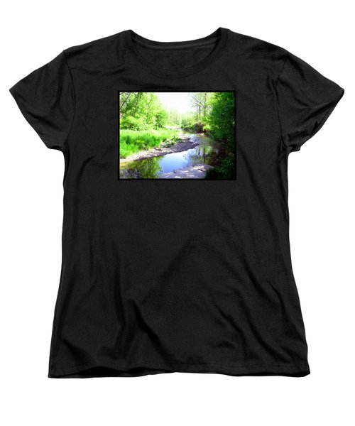 The Babbling Stream Women's T-Shirt (Standard Cut) by Shawn Dall