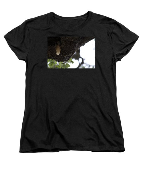The Live Oak Women's T-Shirt (Standard Cut) by Shawn Marlow