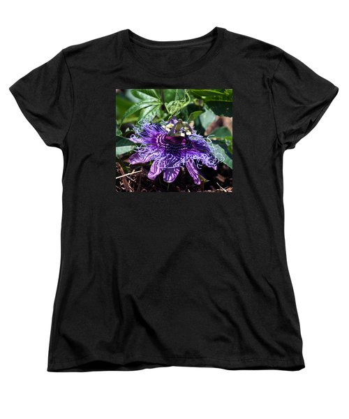 The Passion Flower Women's T-Shirt (Standard Cut) by Kim Pate