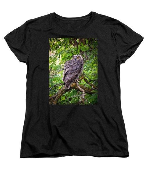 The Perch Women's T-Shirt (Standard Cut) by Steve McKinzie