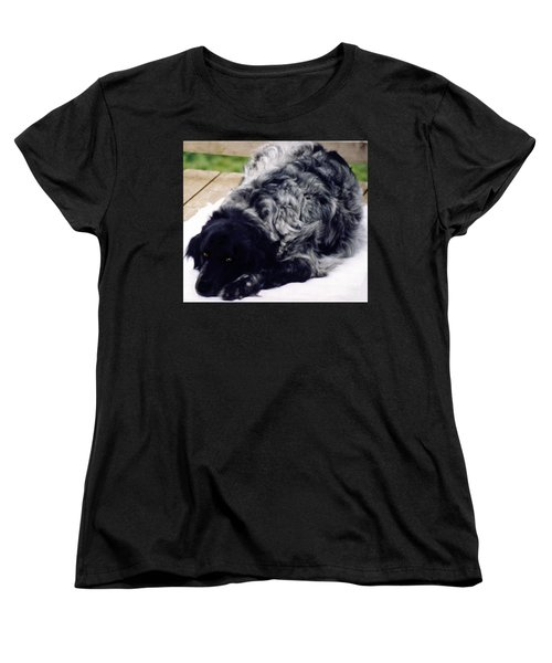 The Shaggy Dog Named Shaddy Women's T-Shirt (Standard Cut) by Marian Cates