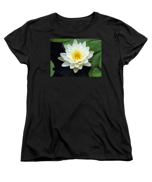 Women's T-Shirt (Standard Cut) featuring the photograph The Water Lilies Collection - 02 by Pamela Critchlow