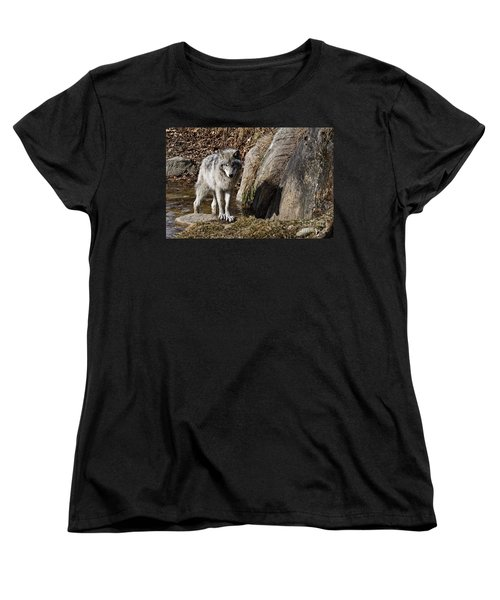 Women's T-Shirt (Standard Cut) featuring the photograph Timber Wolf In Pond by Wolves Only