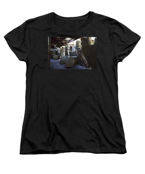 Treadwell Mine Interior Women's T-Shirt (Standard Cut)