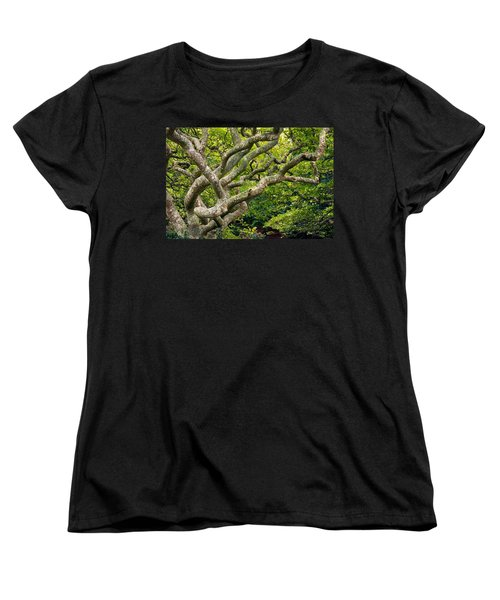 Women's T-Shirt (Standard Cut) featuring the photograph Tree #1 by Stuart Litoff