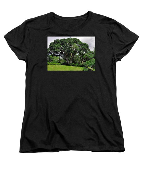 Tree By The River Women's T-Shirt (Standard Cut) by Lydia Holly
