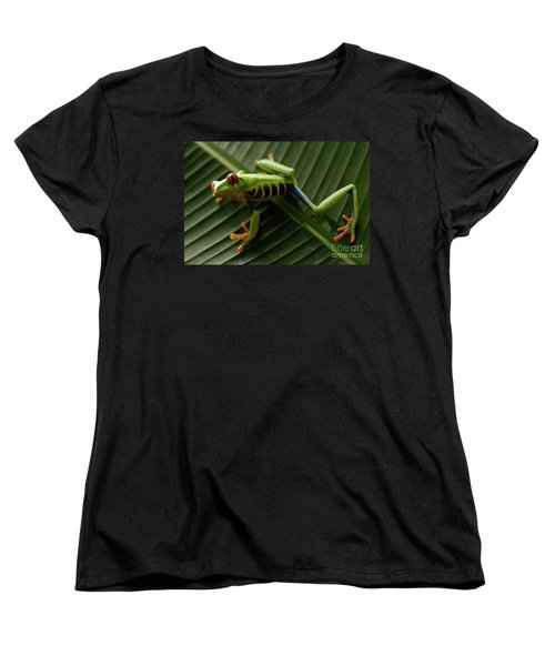 Tree Frog 16 Women's T-Shirt (Standard Cut) by Bob Christopher
