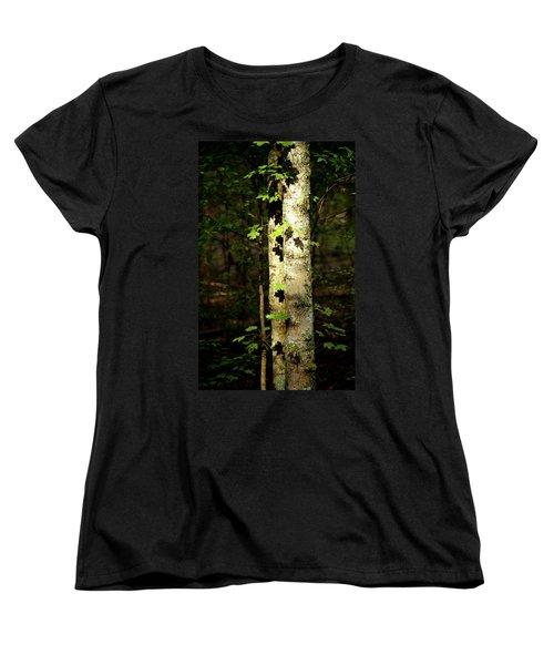 Tree In The Woods Women's T-Shirt (Standard Cut) by Pamela Critchlow