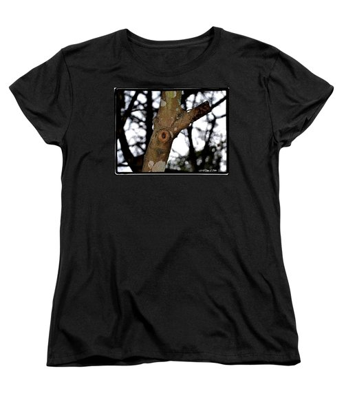 Women's T-Shirt (Standard Cut) featuring the photograph Tree Observation by Tara Potts