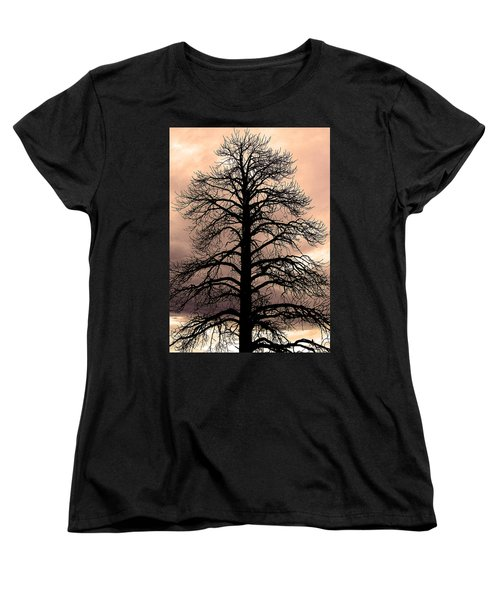 Tree Silhouette Women's T-Shirt (Standard Cut) by Laurel Powell
