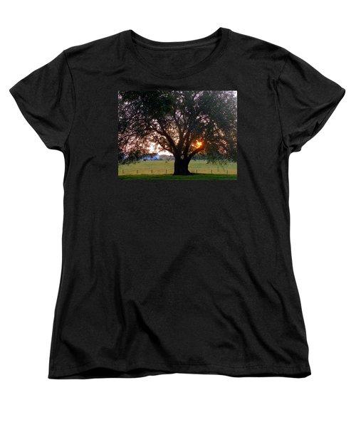Tree With Fence. Women's T-Shirt (Standard Cut) by Joseph Skompski